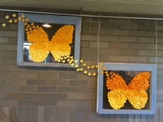 Butterflies Take Flight at Kemper