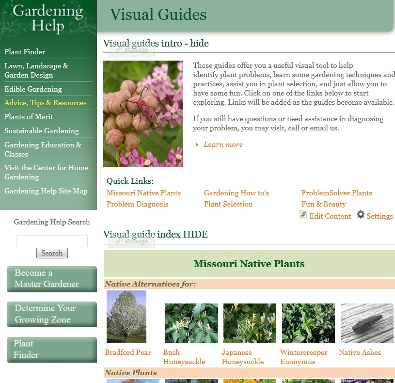 Want More Native Plants in Your Garden?