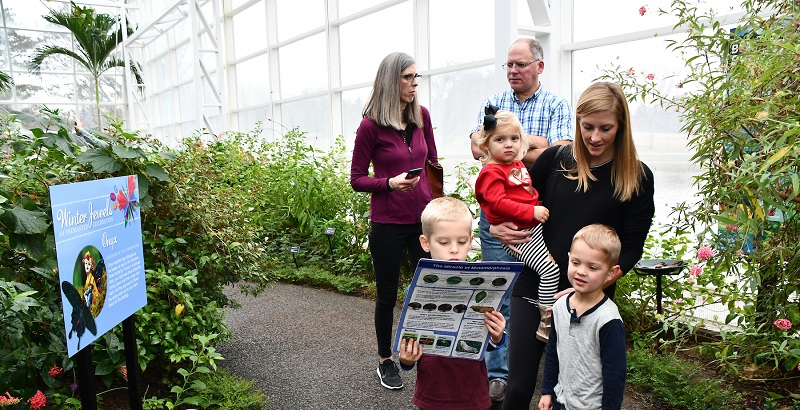 Conservatory Visitors