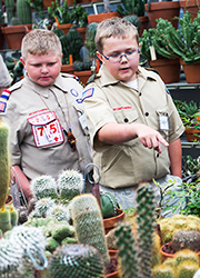 Boy scouts viewing desert show