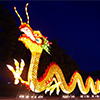 Welcoming Dragon Lantern