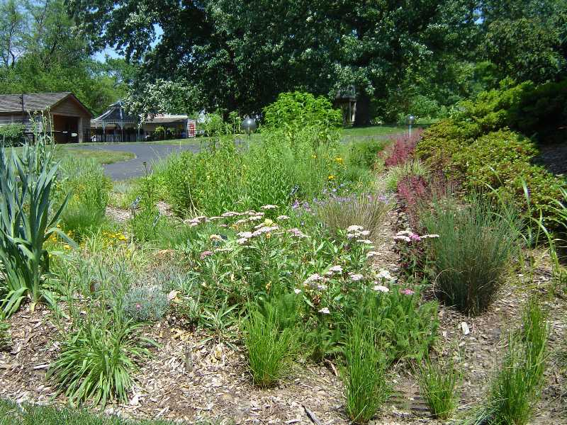 Garden design for Garden landscaping ideas for large gardens