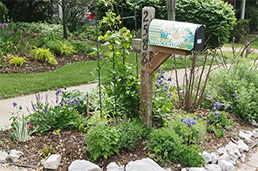 Mailbox with plantings