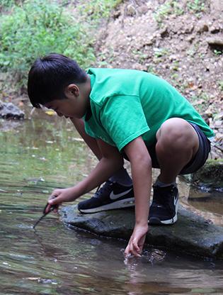 Boy gazing into stream