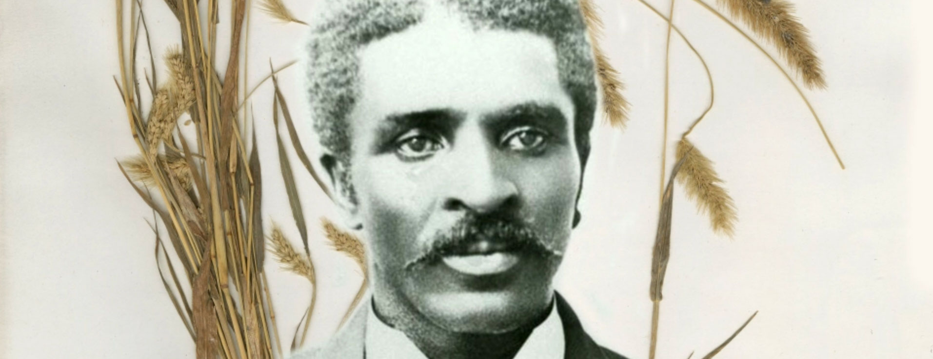 George Washington Carver portrait surrounded by grass specimens