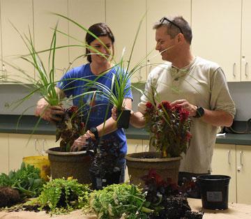 container gardening program