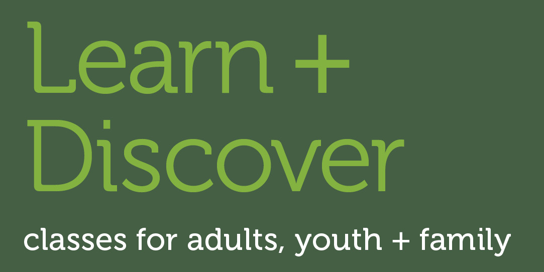 Learn and Discover - Spring Summer 2020