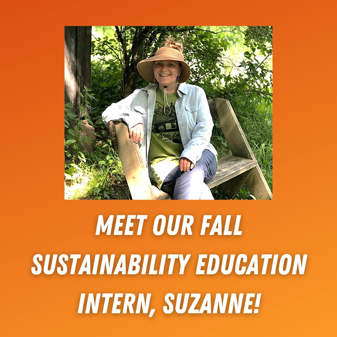 Meet our fall intern