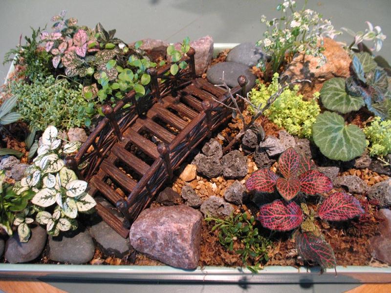 How to Create a Fairy Garden - Home Gardening Blog