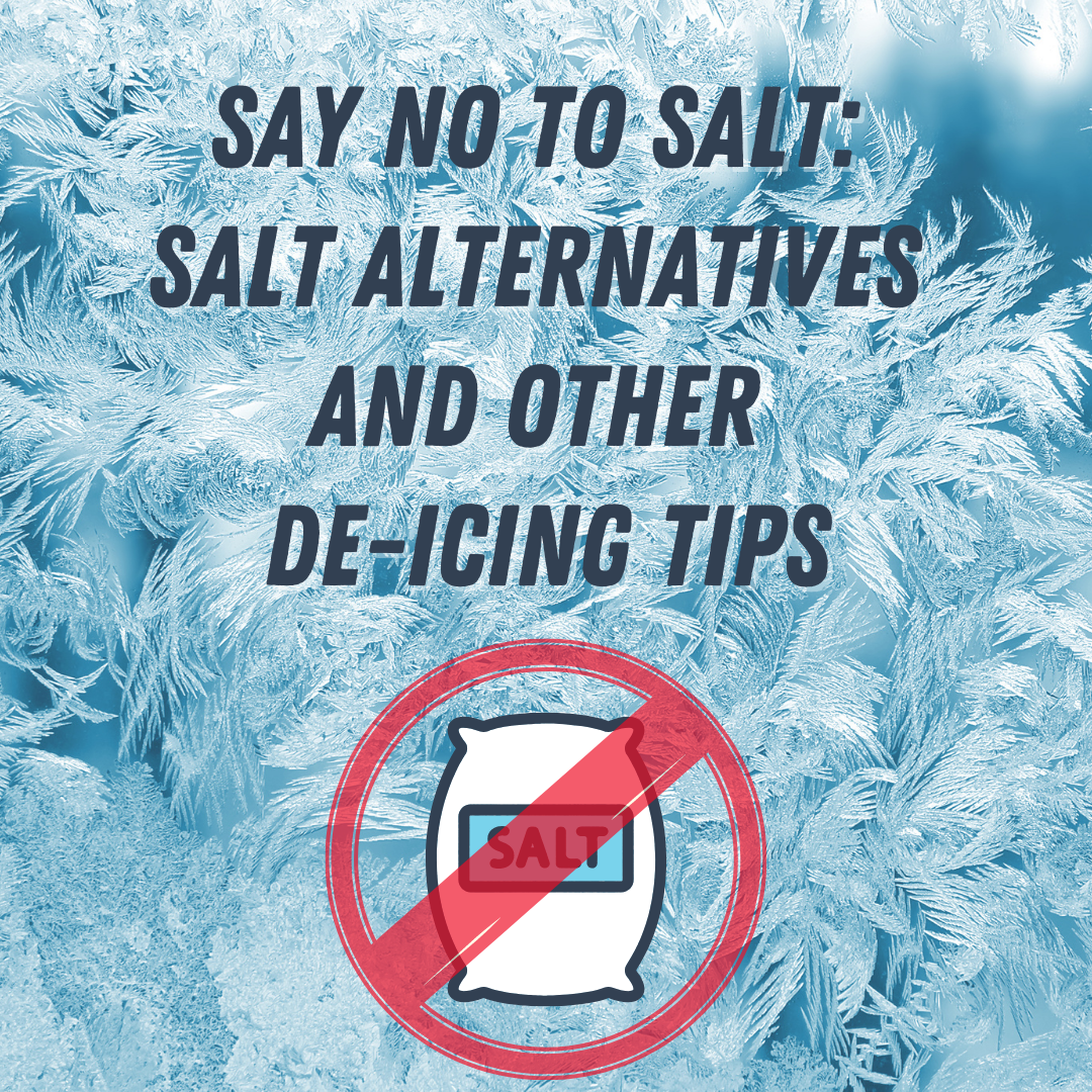 Say No to Salt: Salt Alternatives and Other De-Icing Tips