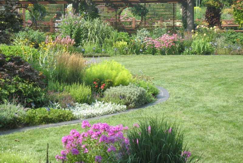 Lawn, Landscape & Garden Design