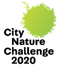 City Nature Challenge 2020 logo