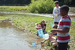 School group netting in a pond